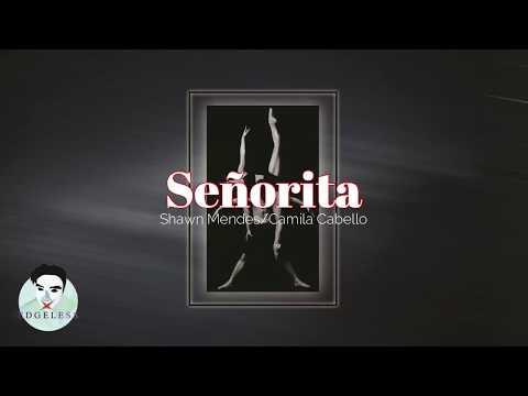 señorita---shawn-and-camila-(lyrics)