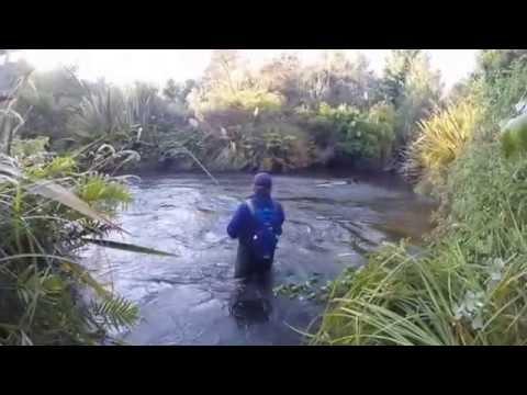 Waitahanui River Fishing 28feb 2015