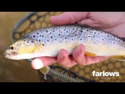 Nick's Beginners Guide To Fly Fishing On Rivers