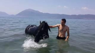 Ιππασία και μπάνιο στη θαλασσα - Ο Brio μαζι με τον Μιχαλη