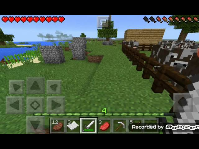 Minecraft PE multiplayer mit martin 2d6