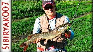 Джиг или воблер   твичинг воблеров и джиг с берега рыбалка на спиннинг в конце лета