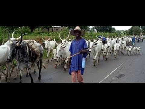 HERDSMEN MENACE IN NIGERIA: THE WAY FORWARD. BY HAMZA AL-MUSTAPHA