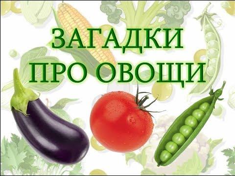 Загадки для детей про овощи с ответами. Про овощи для детей. Загадки