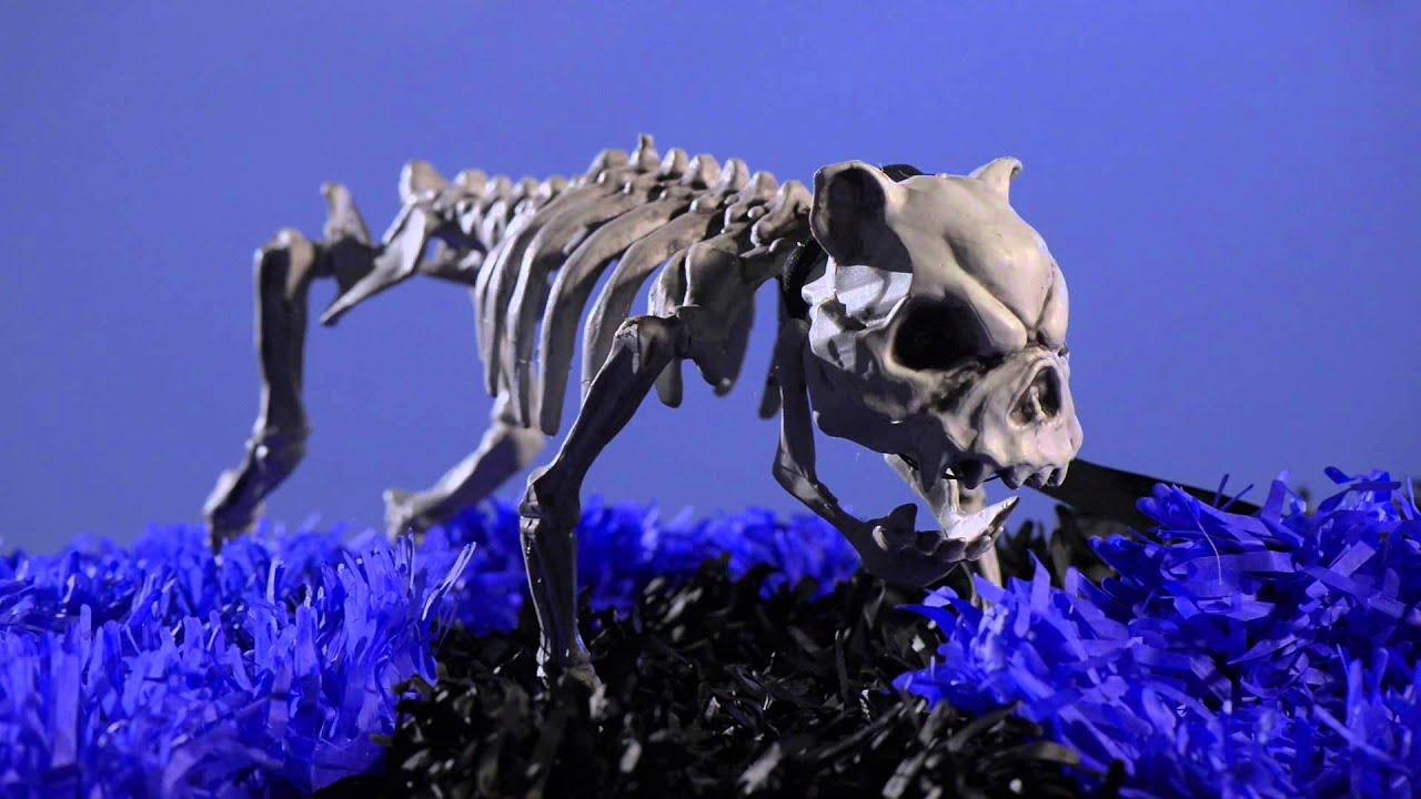 barking skeleton dog halloween decorations shindigz