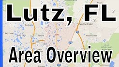 Overview of Lutz FL - Homes For Sale in Lutz FL - Lance Mohr - Tampa Realtor