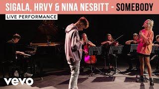 Смотреть клип Sigala, Hrvy, Nina Nesbitt - Somebody | Live