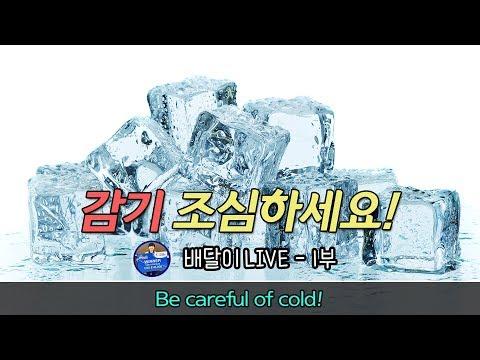 [배달이 라이브] 감기 조심하세요!