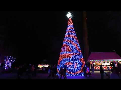 Christmas Tree in Candy Apple Grove @ Winterfest Kings Dominion 12/02/18