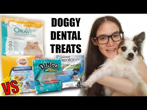 comparing-dental-treats-for-my-picky-pup!-a-comprehensively-unplanned-video-review