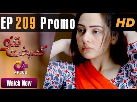 Drama | Kambakht Tanno - Episode 209 Promo | Aplus Dramas | Shabbir Jaan, Tanvir Jamal, Sadaf Ashaan