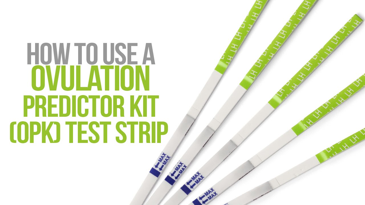 How To Use An Ovulation Predictor Kit Opk Test Youtube
