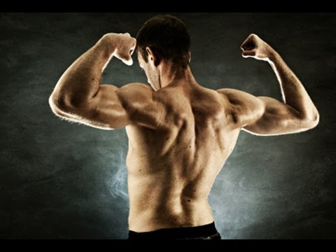 Total Upper Body Home Workout : NO Equipment Muscle Building - YouTube