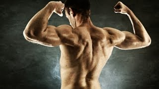 total upper body home workout no equipment muscle building