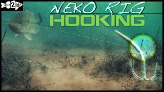 Why Vary Your Neko Rig Hook Placement