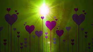 Love HD Video Background | Floral video background | DMX HD BG 289