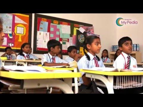 Pearson MyPedia - An innovative program
