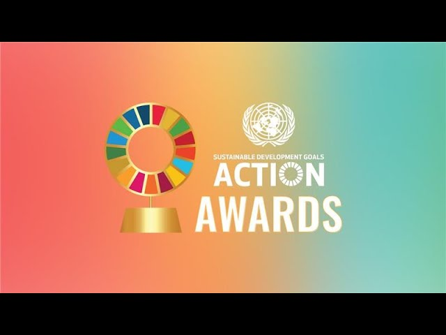 Meet the 2020 finalists of the UN SDG Action Awards!