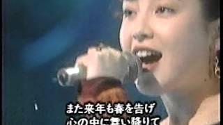 宮沢りえ - 赤い花