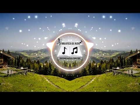 marigold-pop-music-[vlog-no-copyrigt-music]