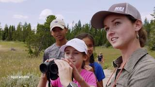 Yellowstone Family Adventure | REI Co-op Experiences