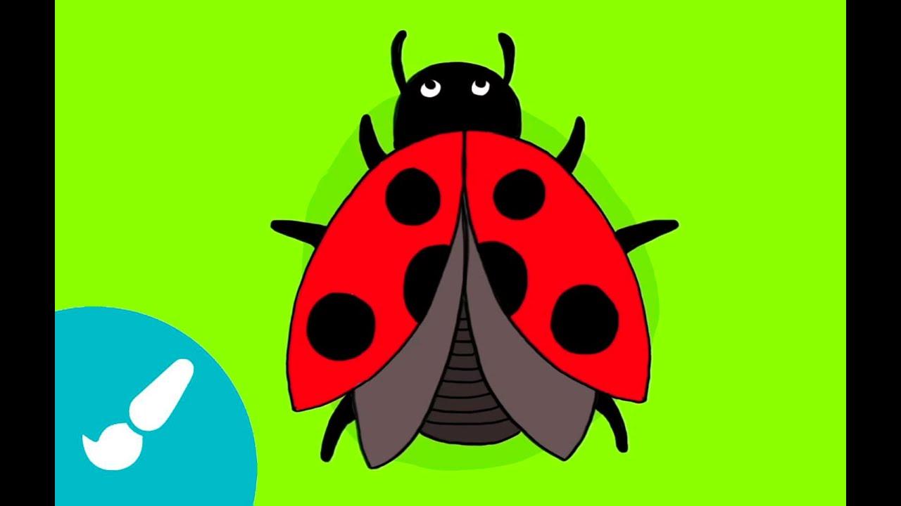 Cómo dibujar una mariquita I How to draw a ladybug - YouTube