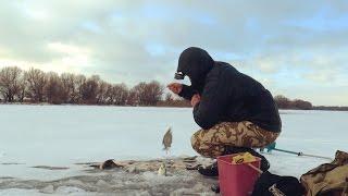 Рыбалка на льду.  Зимняя рыбалка. Попал на густеру.