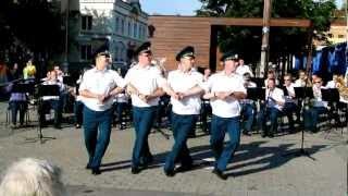 Пермский губернский оркестр. Танец маленьких лебедей.