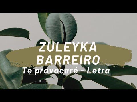 Zuleyka Barreiro- Te provocare Letra