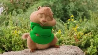 Gambar cover Freaky Friday - Chipmunks (music video)