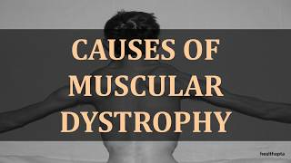 CAUSES OF MUSCULAR DYSTROPHY