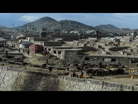 اتفاق بوقف إطلاق النار بين الحكومة الأفغانية وحركة طالبان خلال أيام عيد الأضحى