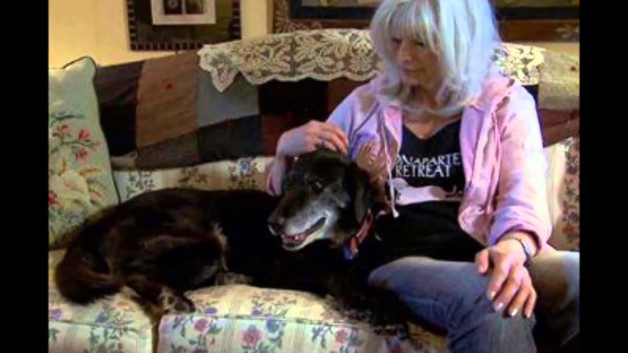 Emmylou Harris and Willie Nelson - Gulf Coast Highway ... Emmylou Harris