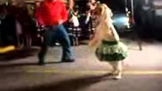 Perro bailando el baile del Perrito