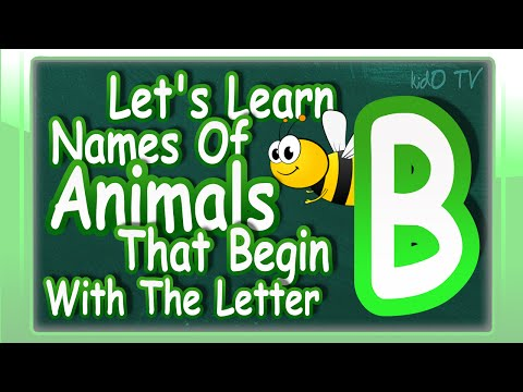 Animals Names In English That Begin With The Letter B | Learn Animals Names With Pictures | kidO TV