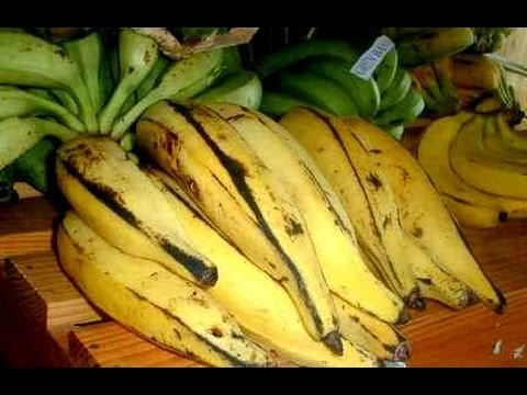 10 Healthy benefits of plantains