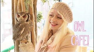 Owl's Garden Cafe Harajuku - Violet LeBeaux
