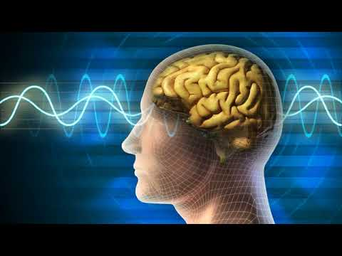 Alpha Waves to study and work | Focus Concentration Music, Brain Power, Study Music