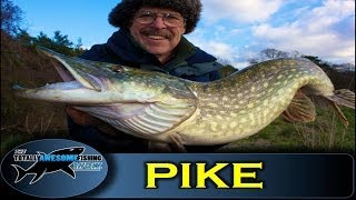 Pike fishing with the New Bitchin