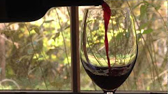 Wine, Chocolate & Cheese: The Best Places in Oregon
