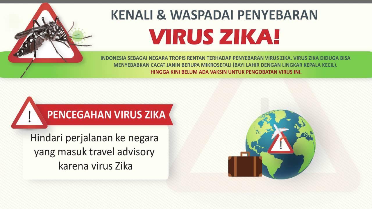 Kenali & Waspadai Penyebaran Virus Zika - YouTube