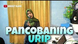 Download lagu PANCOBANING URIP