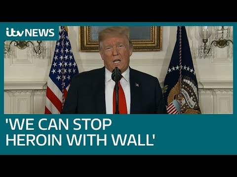 Watch in full: Trump makes speech on immigration in bid for border wall funding | ITV News