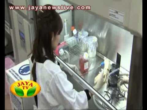 japan stemcell riken haruko 30 01 2014