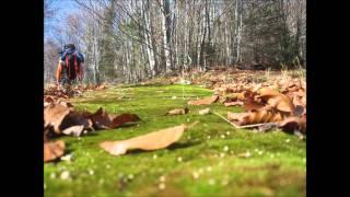 Симпатяги - Иде есен