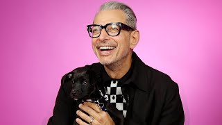 Jeff Goldblum Plays With Puppies While Answering Fan Questions