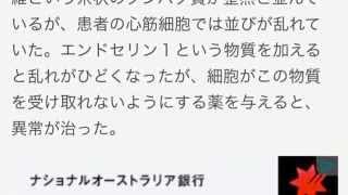 iPSで心筋症悪化の物質特定 慶応大福田教授ら米誌に発表