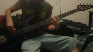 Lynyrd Skynyrd - Swamp Music ((BASS COVER))