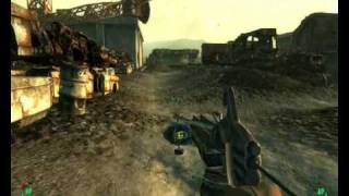 Fallout 3: How To Get Dogmeat