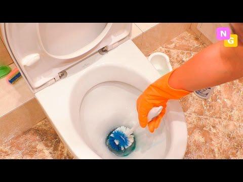 0 - Як очистити котячий лоток від сечового каменю?